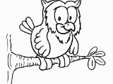 Owl In A Tree Coloring Page Owl On A Tree Coloring Page