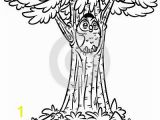 Owl In A Tree Coloring Page Owl Tree Fir Coloring Page Cartoon Illustration