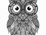 Owl Mandala Coloring Pages for Adults Hey Everyone Check Out This Awesome Intricate Owl for