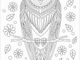 Owl Mandala Coloring Pages for Adults Owl Coloring Pages Coloringbay