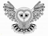 Owl Mandala Coloring Pages for Adults Owl with Big Head