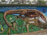 Painted Wall Murals Perth Korora Lookout Aktuelle 2020 Lohnt Es Sich Mit Fotos