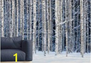 Panoramic Wall Mural Groupon after All You Re My Wonder Wall Gorgeous Murals From Wallsauce