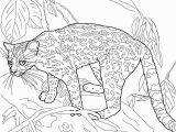 Parable Of the Rich Fool Coloring Page Parable the Rich Fool Coloring Page Inspirational Gist Coloring