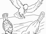Parable Of the sower Coloring Page Parable Of the sower Coloring Page Coloring Pages for Kids