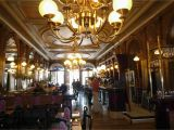 Paris Cafe Wall Murals 15 Of the Best Traditional Paris Cafes and Brasseries