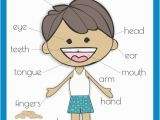 Parts Of the Body Coloring Pages for Preschool Free Body Parts Poster Km Classroom Pinterest