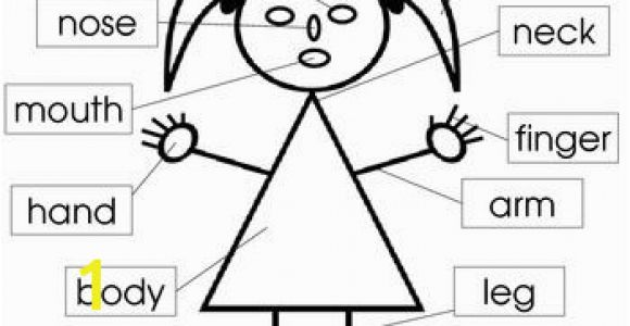 Parts Of the Body Coloring Pages for Preschool Parts Of the Body and Face Posters and Worksheets