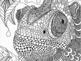 Peacock Feather Coloring Page Advanced Peacock Coloring Pages Advanced Peacock Coloring Pages New