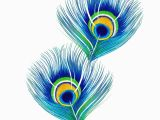 Peacock Feather Wall Mural Peacock Feathers In 2020