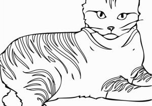 Peg and Cat Coloring Pages Cat Coloring Pages Games Cat Drawing Games at Getdrawings Free