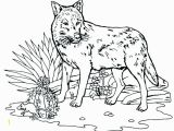 Peter and the Wolf Coloring Page Peter and the Wolf Coloring Pages Free Wolf Coloring Pages Peter and