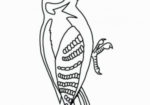 Pileated Woodpecker Coloring Page Pileated Woodpecker Coloring Page Awesome Woodpecker Coloring Page