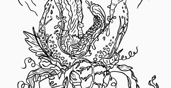 Pileated Woodpecker Coloring Page Pileated Woodpecker Coloring Page Best Easy Coloring Pages for