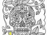 Plain Skull Coloring Pages 252 Best Skulls Images