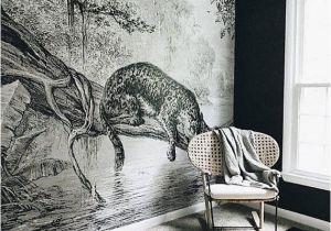 Prepasted Wall Murals Jaguar Mural Jungle Wallpaper In 2018