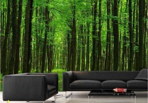 Prepasted Wall Murals Walk In the forest