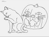 Preschool Pumpkin Coloring Pages Print Coloring Pages Kitten at Coloring Pages