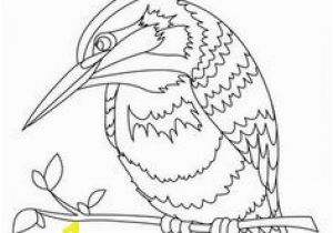 Pretty Bird Coloring Pages 64 Realistic and Detailed Kingfisher Bird Coloring Pages for Adults