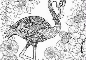 Pretty Bird Coloring Pages Free Printable Adult Coloring Page Of Pink Flamingo Bird