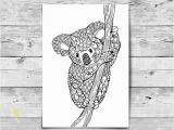 Prince Fluff Coloring Pages Adult Coloring Page Koala Printable Colouring Page