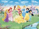 Princess sofia Wall Mural Princess Room with Disney Princess Wall Mural Wallpaper Mural