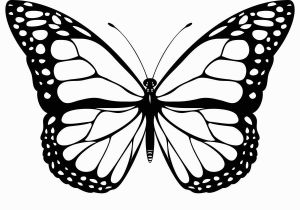 Print butterfly Coloring Pages Free Printable butterfly Coloring Pages for Kids