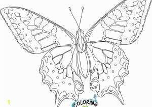 Print butterfly Coloring Pages Kids Coloring Pages butterflies 9 Printable Coloring Page