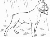 Printable Boxer Dog Coloring Pages Dog Coloring Pages forcoloringpages Color Sheets