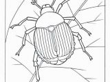 Printable Bug Coloring Pages Bugs Bunny Coloring Pages Awesome Coloring Pages for Girls Lovely