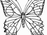 Printable butterfly Coloring Pages butterfly Coloring Page Coloring Page Free butterfly Coloring