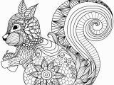Printable Coloring Pages Of Squirrels Lovely Squirrel Zentangle Coloring Page