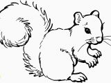 Printable Coloring Pages Of Squirrels Printable Coloring Pages Squirrels Beautiful Free Coloring Pages