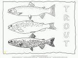 Printable Fishing Coloring Pages Freshwater Fish Coloring Pages Perfect Coloring Freshwater