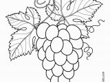 Printable Fruits and Vegetables Coloring Pages Grapes with Leaves Fruits and Berries Coloring Pages for