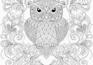 Printable Heart Coloring Pages Adults New Adult Coloring Pages Peacock Heart Coloring Pages