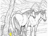 Printable Horse Coloring Pages for Adults Pin by Elena Krupnova On Coloring Pages