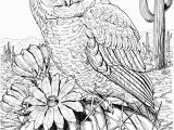 Printable Owl Coloring Pages for Adults 10 Difficult Owl Coloring Page for Adults