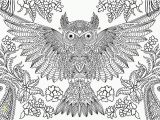 Printable Owl Coloring Pages for Adults Free Owl Adult Coloring Pages to Print Coloring Home