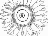 Printable Sunflower Coloring Page Sunflower Coloring Page for Kindergarten