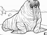 Printable Zoo Animals Coloring Pages Wildlife Coloring Pages Animal Alaska