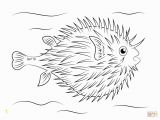 Puffer Fish Coloring Page Fish Free Clipart 126