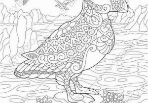 Puffin Coloring Pages to Print Puffin Coloring Pages Animal Coloring Book Pages for Adults