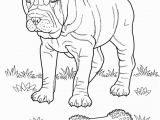 Puppies and Kitties Coloring Pages New Coloring Pages Dog for Kids Baby Puppy and Cat