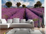 Purple Wall Murals Uk Lavender Field In Provence France 3 09m X 400cm Wallpaper