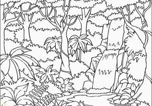 Rainforest Coloring Page Fresh Rainforest Coloring Sheet Collection