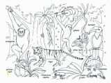 Rainforest Scene Coloring Pages Coloring Animals Coloring Pages Tropical Jungle and Page Kids