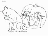 Realistic Animal Coloring Pages 2018 Coloring Pages Animals Realistic Katesgrove