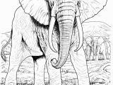Realistic Animal Coloring Pages to Print Free Elephant Coloring Pages