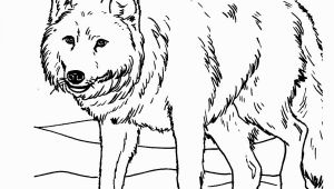 Realistic Animal Coloring Pages to Print Free Printable Realistic Animal Coloring Pages at